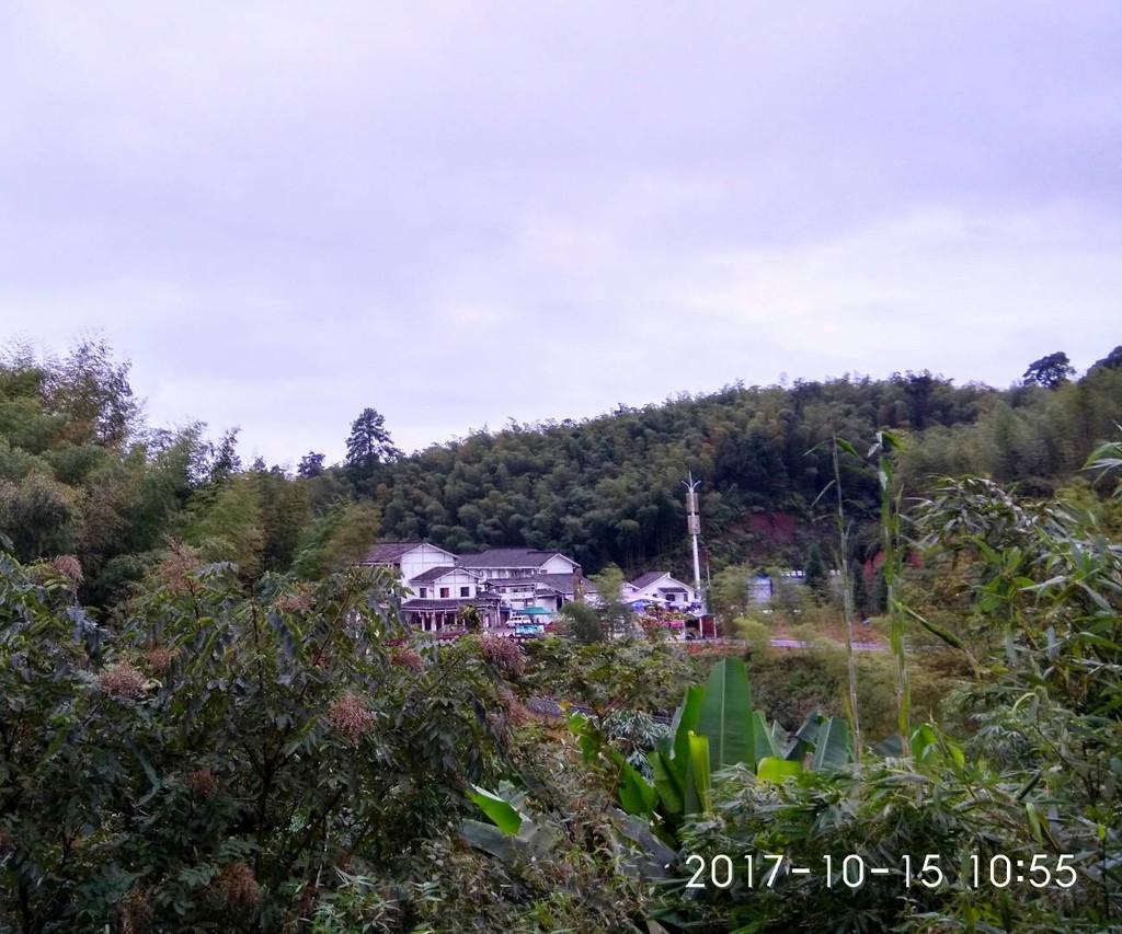 贵州 遵义 遵义会议会址 竹海森林国家公园 茅台镇