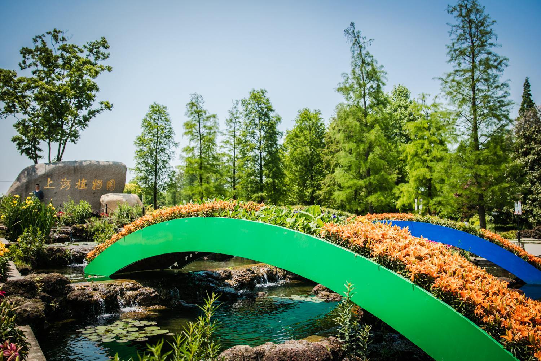 上海植物園    -0
