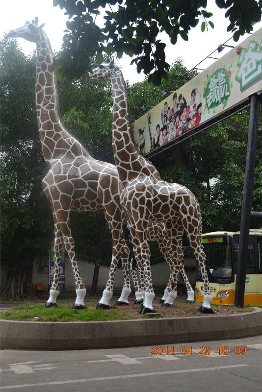 0091长隆野生动物园附近爸爸去哪儿的广告牌