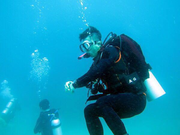 送上一发海底可爱生物