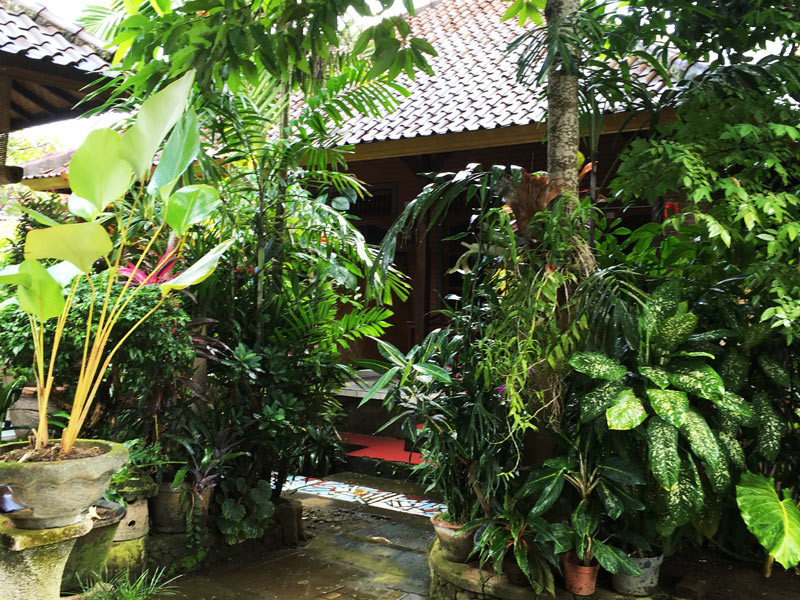 巴厘岛木雕求学记 (1)