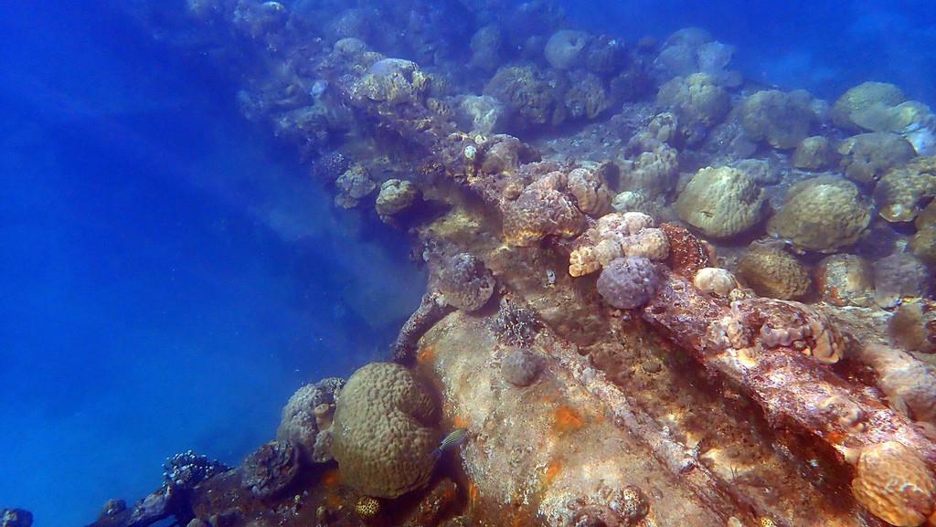 今天最后一个潜点:日军沉船遗迹 海底沉船遗址是二战时日军战舰的