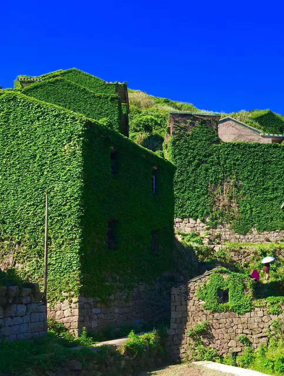 嵊山岛另一个值得一游的地方– 后头湾荒村, 也就是传说中绿野仙踪