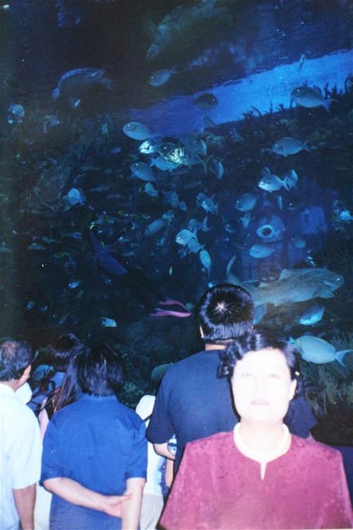 [原创]北京海洋馆,动物园.北京52