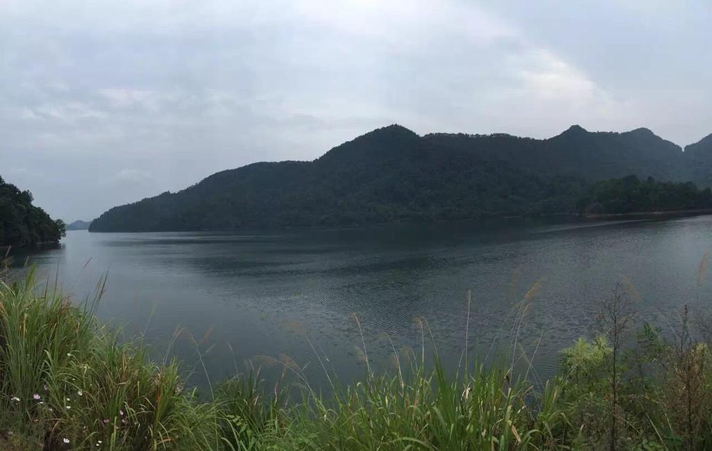 森林氧吧&千岛湖环湖游
