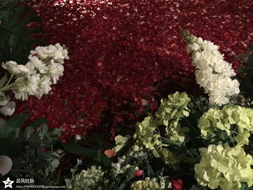 到处都漂浮着玫瑰花瓣