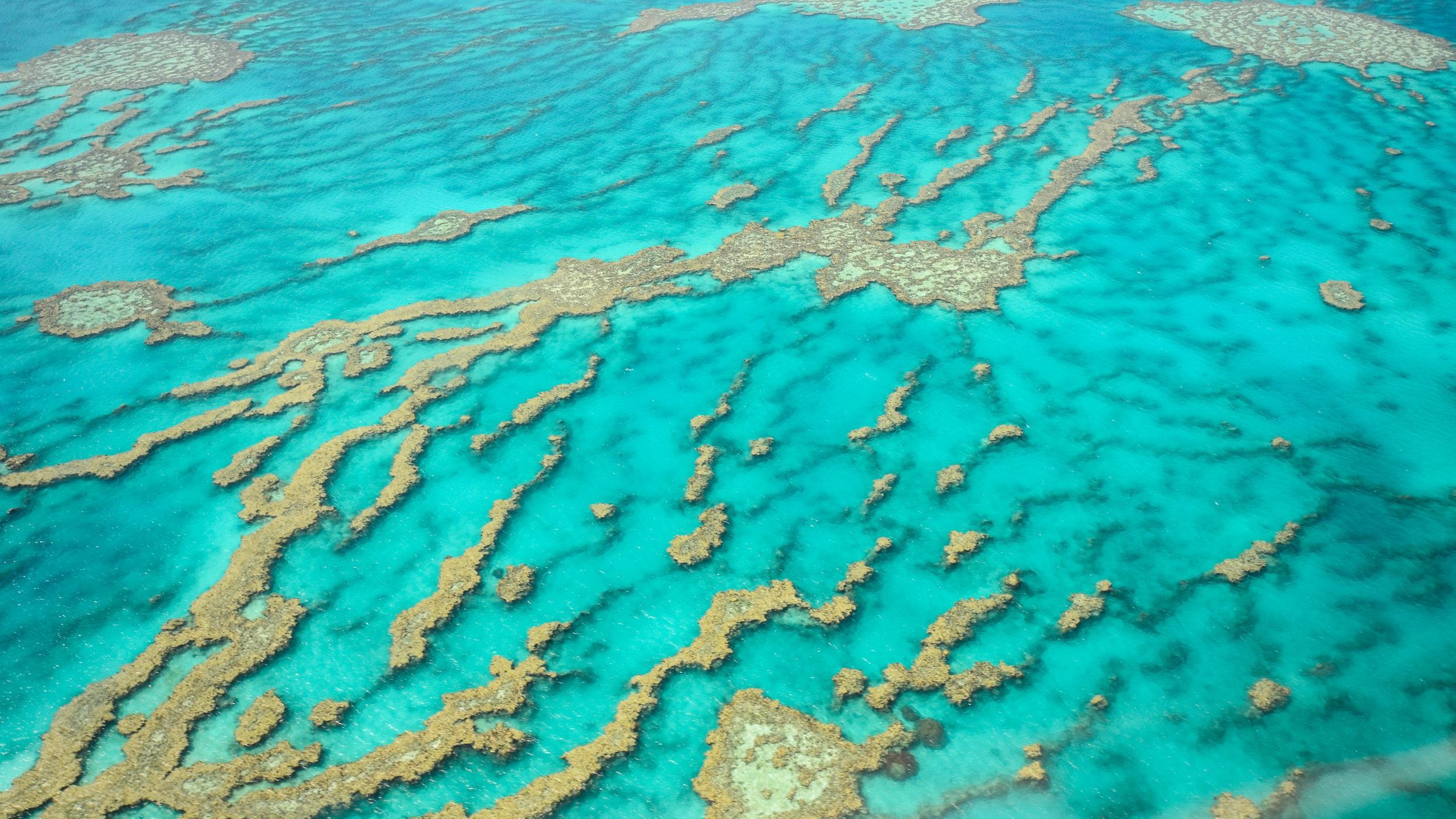 大堡礁  Great Barrier Reef   -2