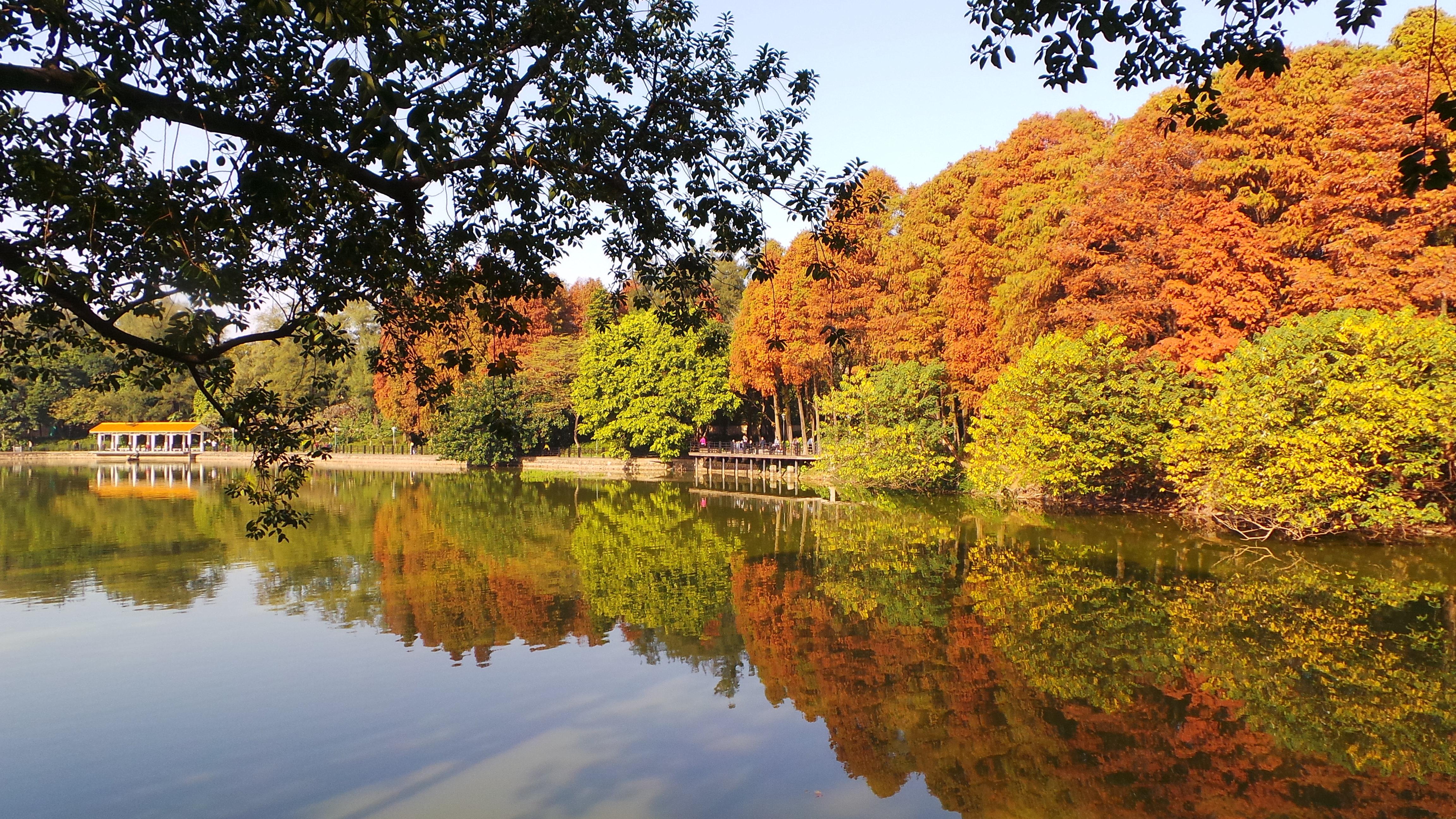 麓湖公园 环湖近一周后
