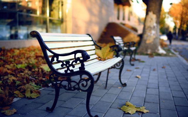 校园秋天印象