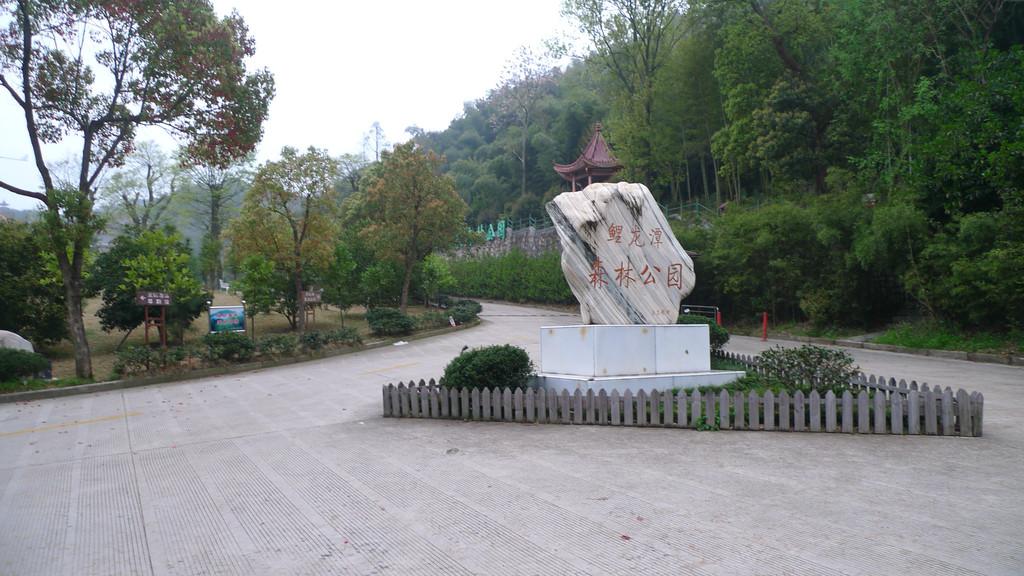 游鲤龙潭国家森林公园