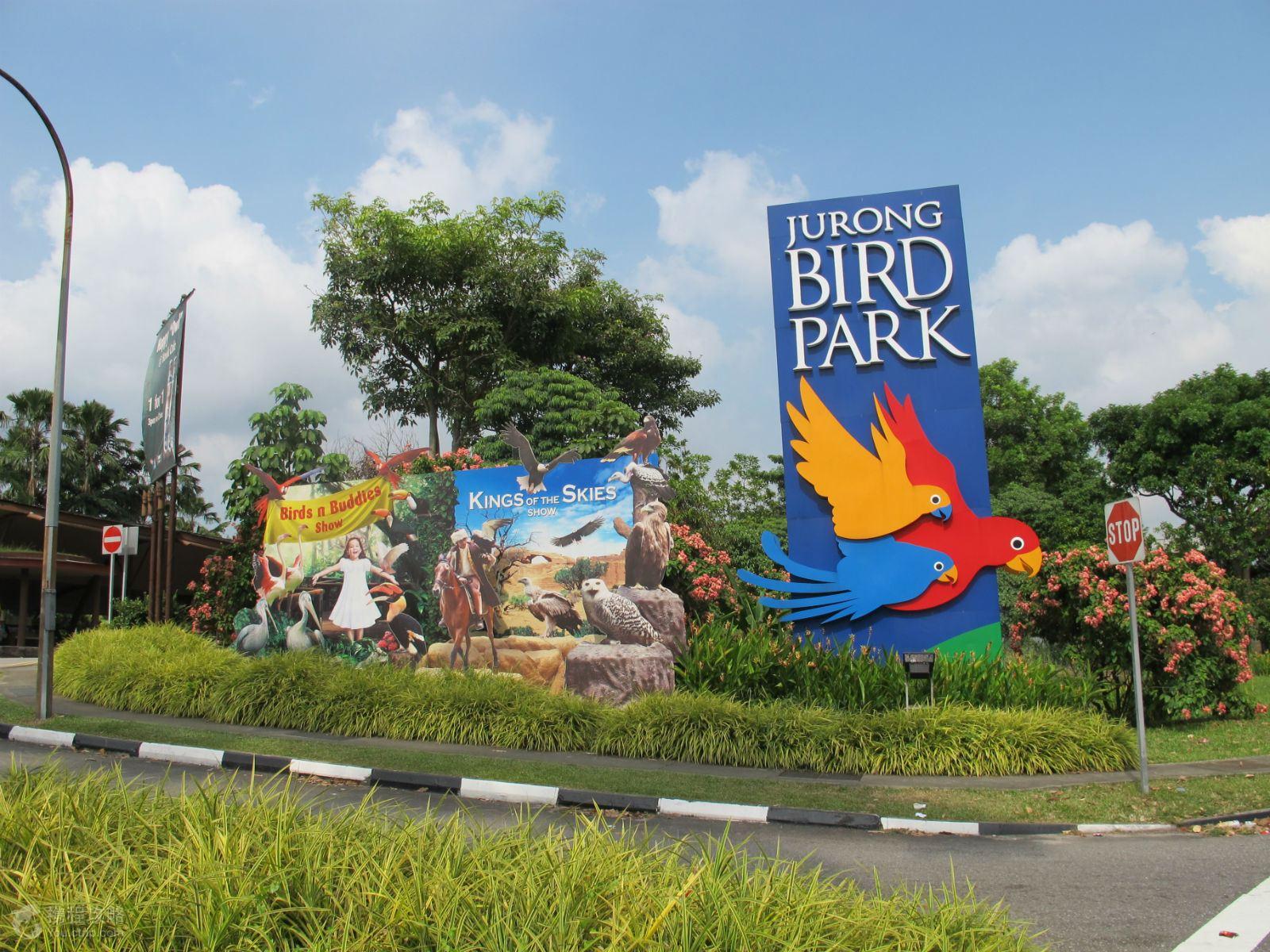亲子大体验--行程安排新加坡日间动物园幕后导览和裕廊飞禽公园