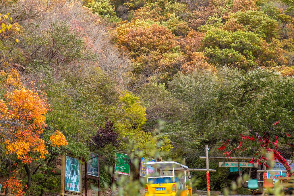 綠野仙谷是翠楓山自然風景區主要游覽景點之一,流程全長4.5公里.