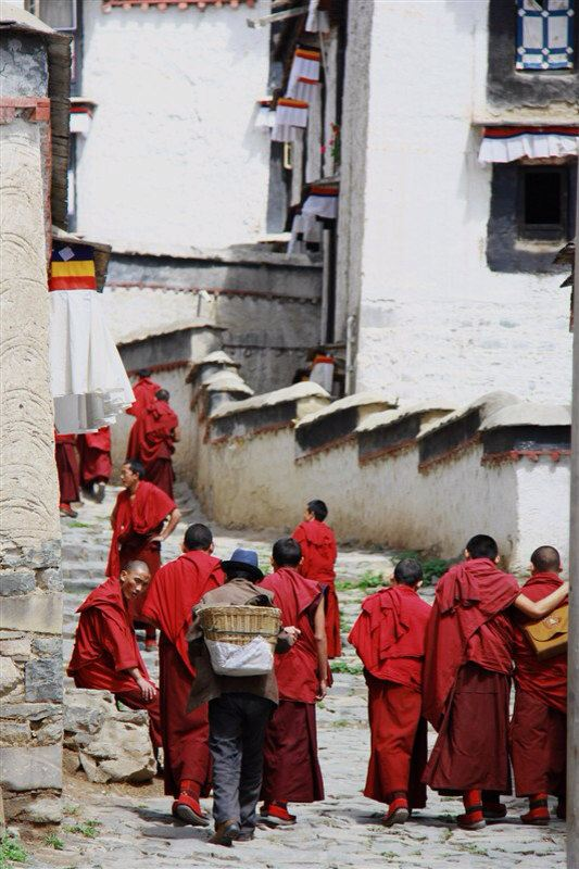 201208 西藏游 (完毕)