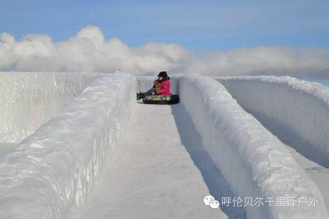 高山冰雪带动物