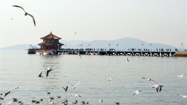 """市内的著名风景点""""燕岛秋潮""""位于基地内燕儿岛山的东南角,2008年第29"""