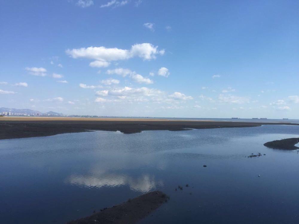 北戴河鸽子窝公园附近海滨