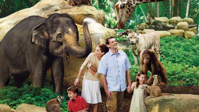 【携程攻略】新加坡新加坡裕廊飞禽公园+新加坡动物