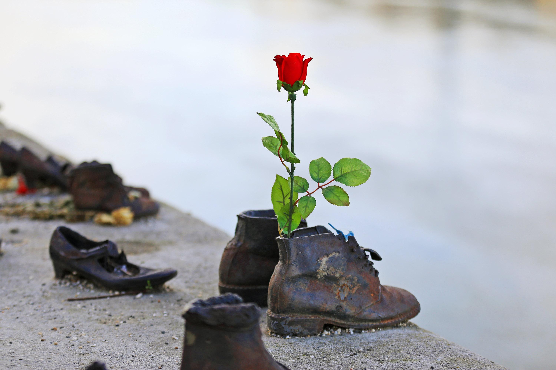 多瑙河畔鞋  Shoes on the Danube   -0