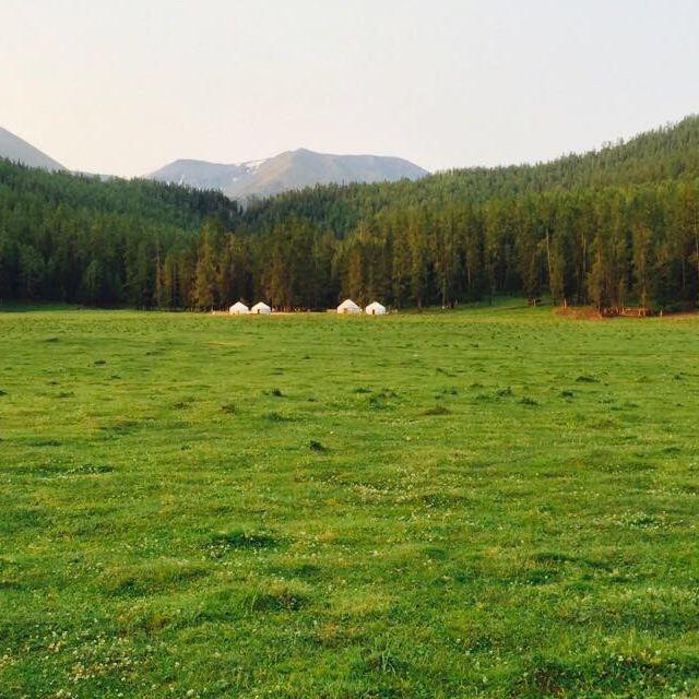 喀纳斯白哈巴西北第一村山庄 喀纳斯白哈巴森林山庄 贾登峪