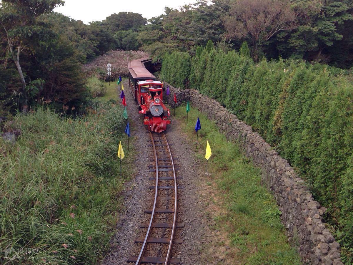 韩国济州岛2日1晚跟团游·a森林小火车
