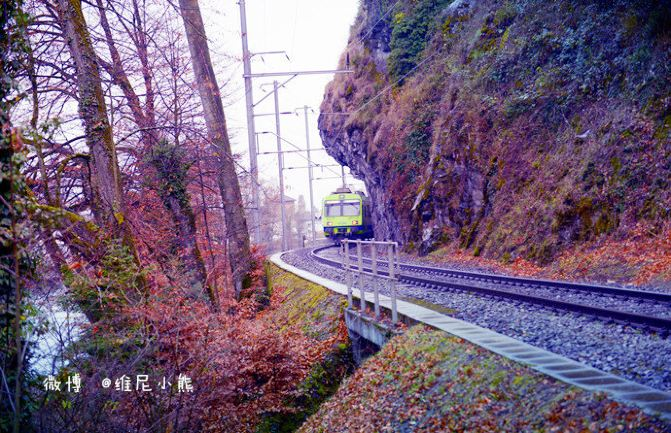 【瑞士】美如童话的卢塞恩湖与天堂小镇 - 维尼小熊 - 维尼小熊旅行美食记