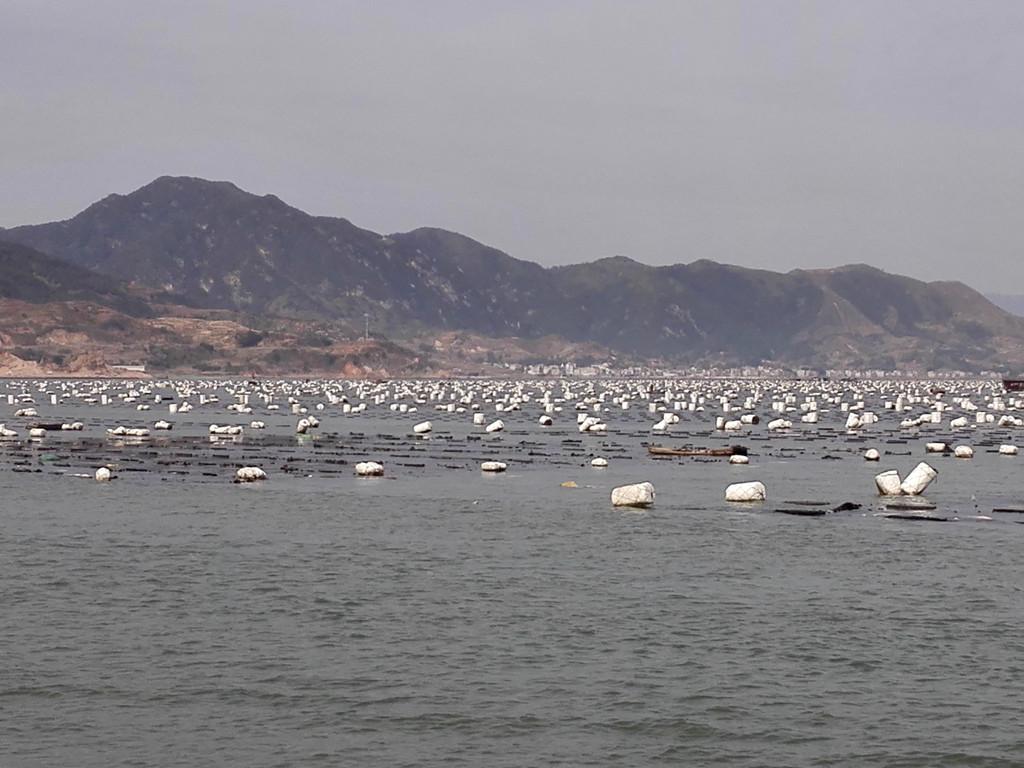 霞浦北礵岛风景