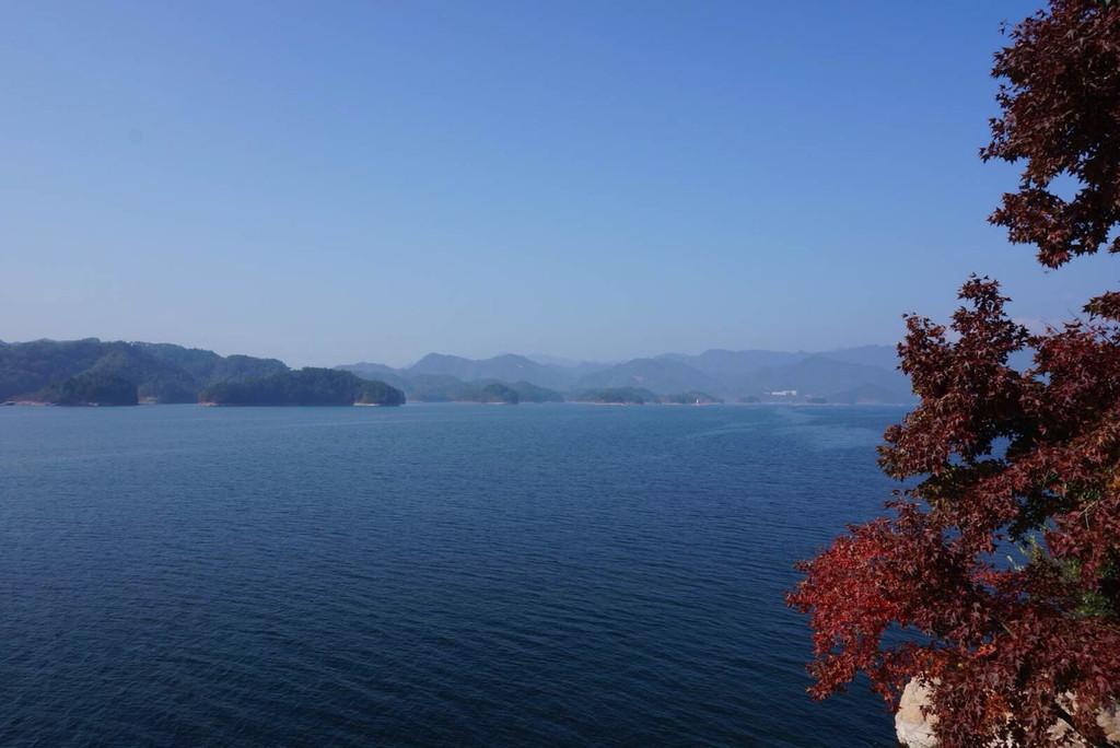 千岛湖小金山山水间微酒店