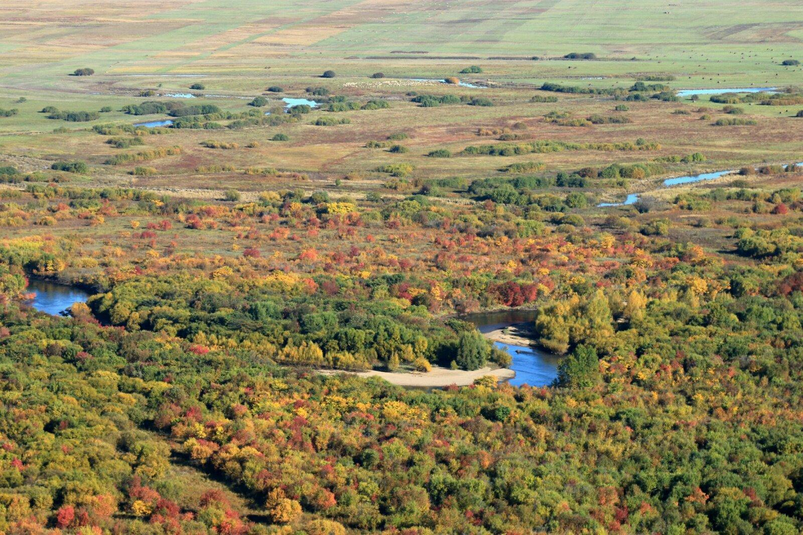 湿地涵盖了额尔古纳除原始森林外几乎所有类型的自然生态系统.图片