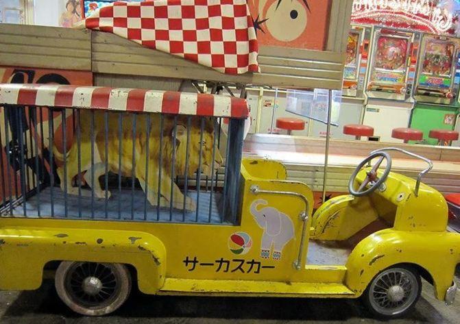 野生动物园观光车