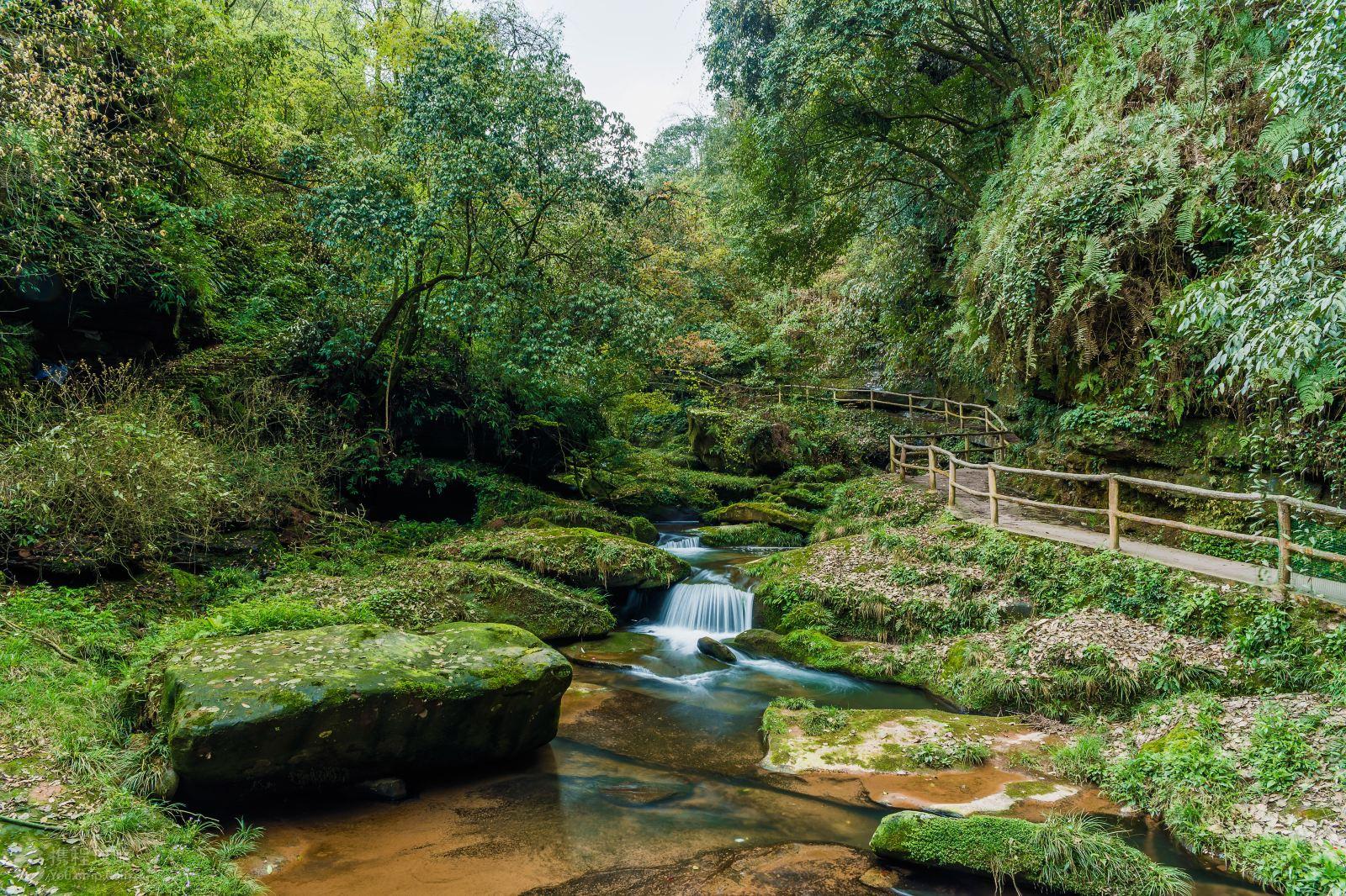野生动物园+风景