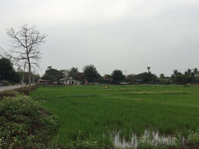 稻田飞机场啥时开工