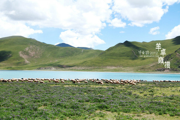 7月拉萨旅游摄影自由行详细游记-天津路线攻略西藏v游记攻略攻略图片