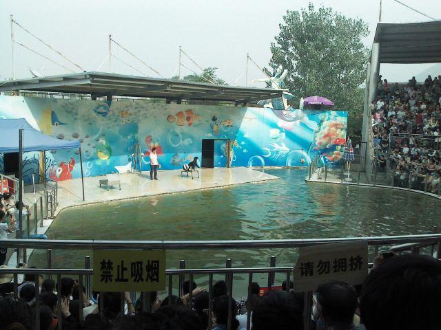 西安秦岭野生动物园一日游