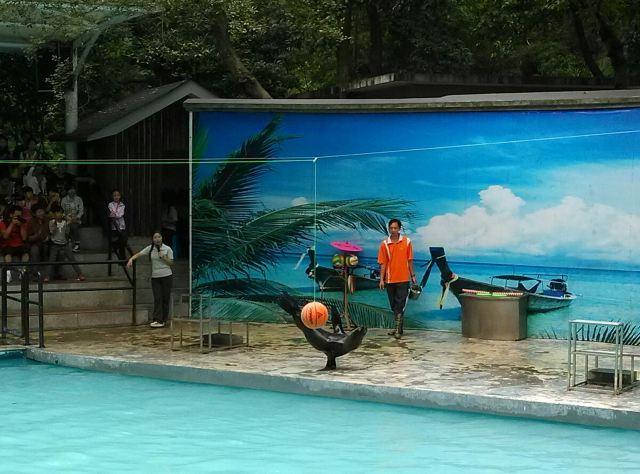10月5日,携程网购杭州动物园套票2张游动物园虎跑儿童