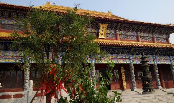 沧州新动物园全景图