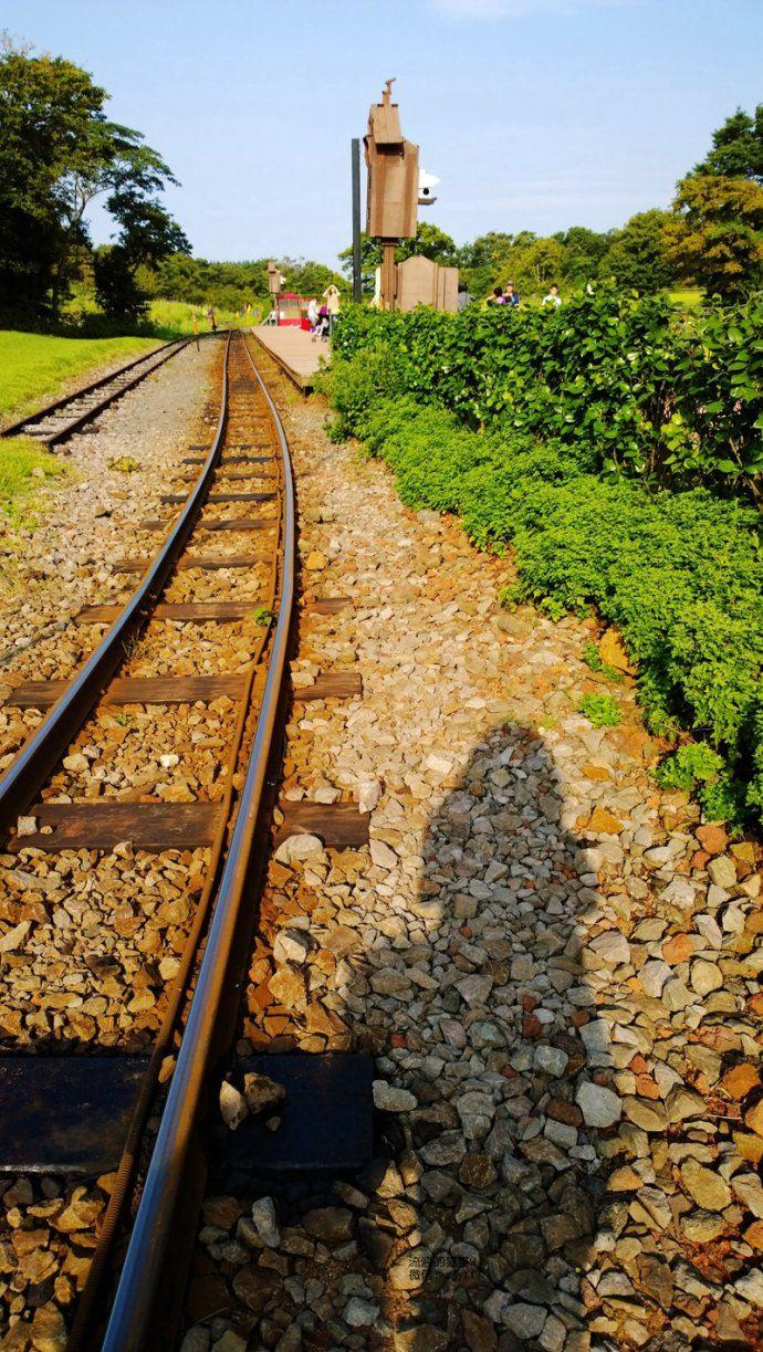 【济州岛】搭乘森林小火车