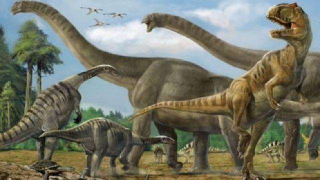 动物 恐龙 640_360