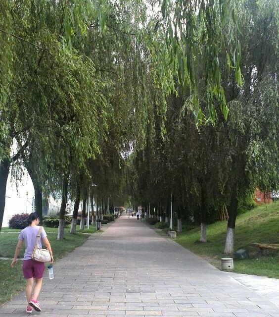上海到宜昌亲子自由行五天四晚动车来回