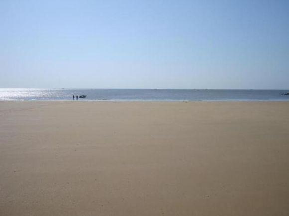 海边污染矢量图