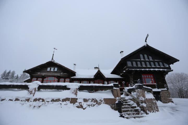 喜欢自然风光的游客比较推荐frognersetern拍雪景,挪威的森林,一些
