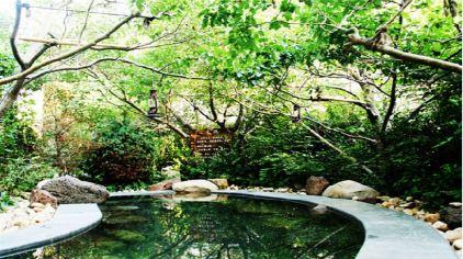 河海龙湾温泉