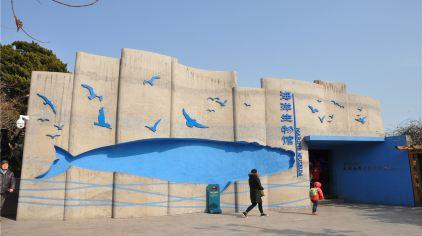 海底世界-海洋生物馆 (2)
