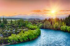 260447723_medium-新西兰-C_image