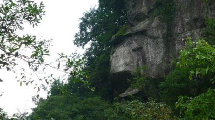 福寿山森林公园 (28)