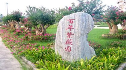 鄢陵花博园 (6)