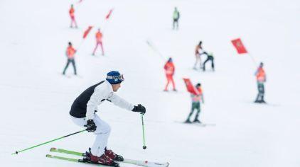大明山高山滑雪134461 (8)