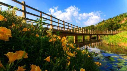 汀江国家湿地公园 (11)