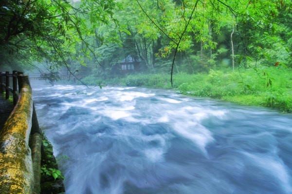 张家界金鞭溪:溪流?峡谷?傻傻分不清楚