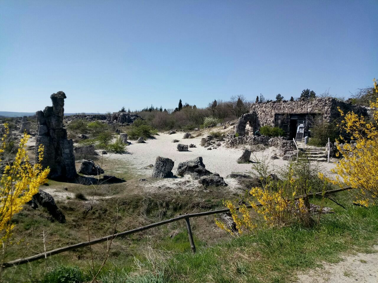 Stone Forest  Stone Forest   -0