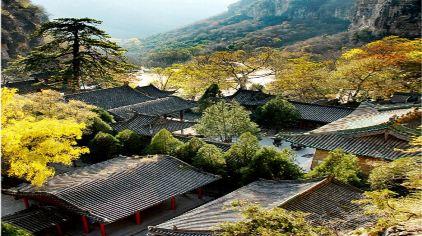 藏山 (8)